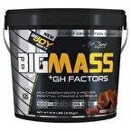 Big Joy Big Mass +GH Factors 3000 Gr