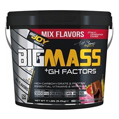 Big Joy Big Mass +GH Factors 5000 Gr Mix