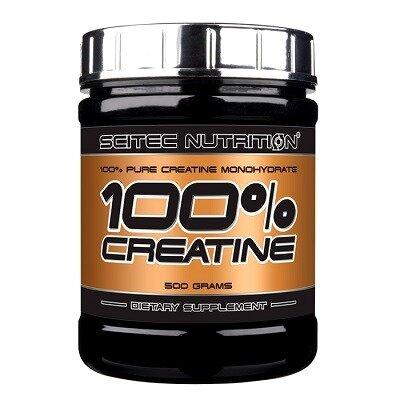 Scitec Creatine Monohydrate Powder 300 Gr